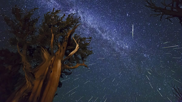the-2015-perseid-meteor-shower-peaks-this-week-greenatom
